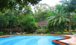 Granpas Inn — Bougainvillea
