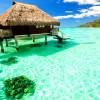 Отдых на Мальдивах. Плод первый