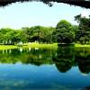 Тайпинг озера-сады.