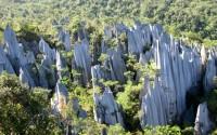 парк Гунунг-Мулу